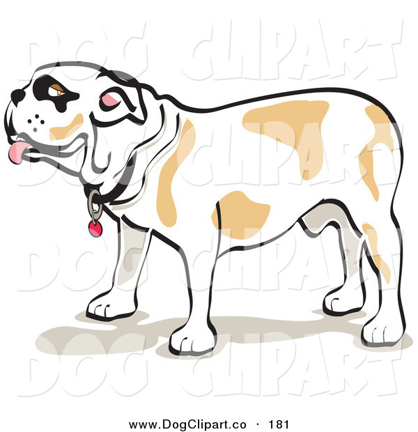 Vector Clip Art of a Bulldog Standing in Profile and Walking Left on White