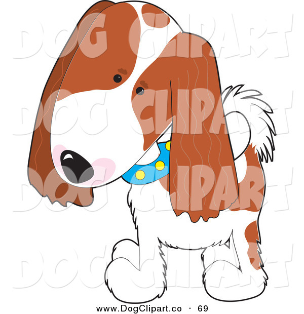 Vector Clip Art of a Cute Cavalier King Charles Spaniel Puppy Dog Wearing a Blue Collar with Yellow Spots, Tilting His Head in Curiousity and Walking Forward