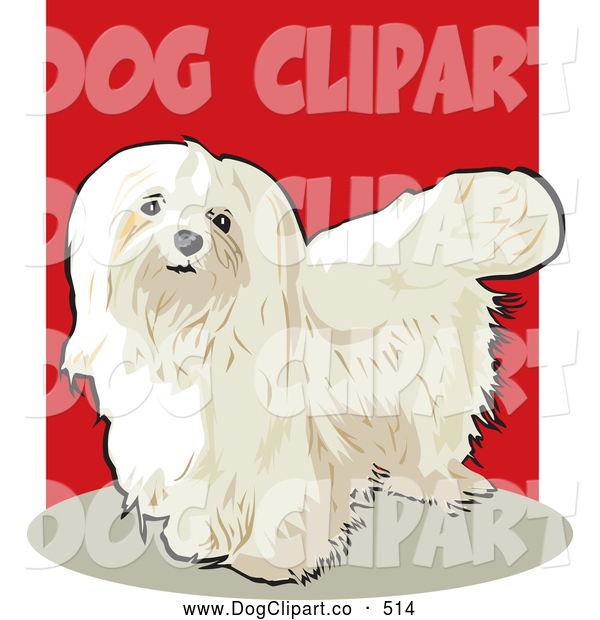 maltese dog clipart - photo #49