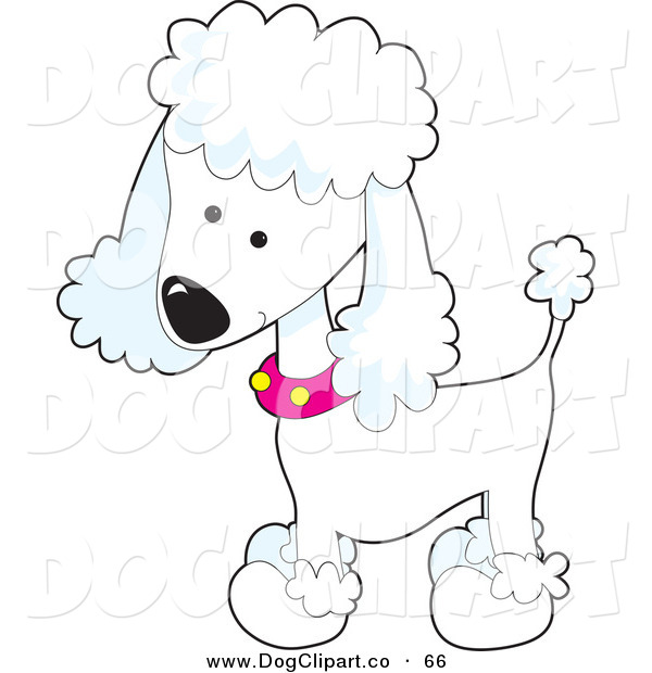 Vector Clip Art of a Cute White Poodle Puppy Dog Wearing a Pink Collar with Yellow Spots and Sporting a Puppy Clip on White