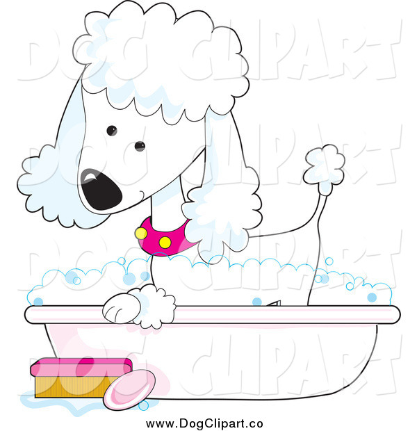 Vector Clip Art of a Cute White Poodle Taking a Sudsy Bubble Bath in a Tub