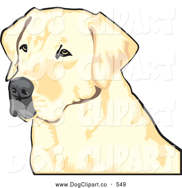 Vector Clip Art of a Friendly Yellow Labrador Retriever Dog with a Black Nose, Waiting Patiently and Looking off to the Left While Hunting