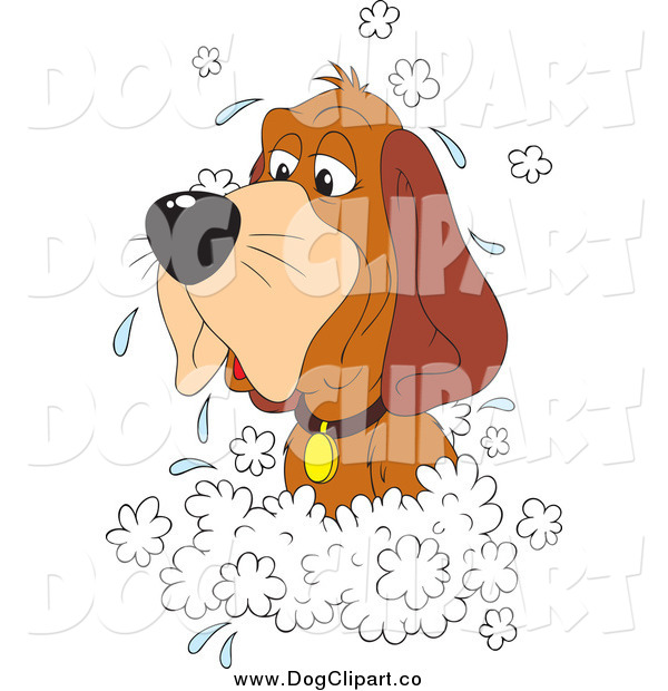 Vector Clip Art of a Hound Dog in a Sudsy Bath