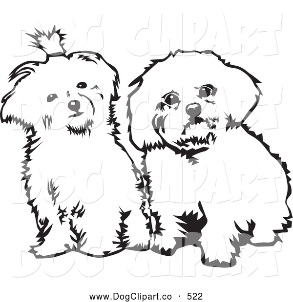 maltese dog clipart - photo #27